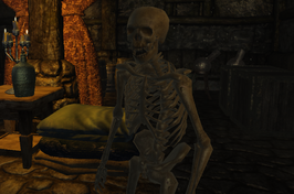 Kelton skeleton (D2 FoV character)