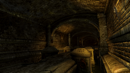 Sewer Tunnels interior (D2 FoV location)