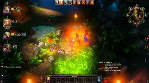 Divinity Original Sin - Lady in the Lake - Entering the Pool to another Dimension Guide