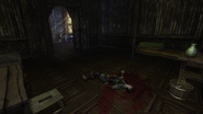 Wild Willows Manor doctor's corpse (D2 FoV location)