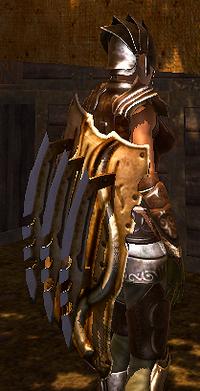 Lion's Mane shield side view (D2 armor)