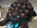Ancient Tainted Turtle