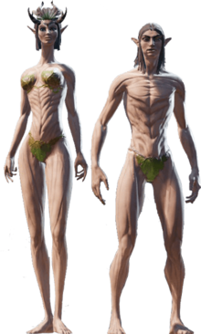 Divinity Original Sin 2 Races Divinity Wiki Fandom