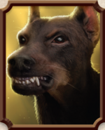 Source Hound Portrait