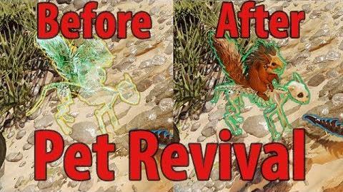 Pet Revival - Divinity Original Sin 2 Definitive Edition