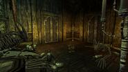 House of Secrets interior skeleton room (D2 FoV location)