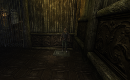 Wild Willows Manor teddy stands on pressure plate (D2 FoV location)