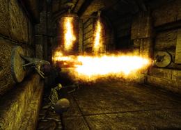 Forgotten Crypt fire traps (D2 FoV location)