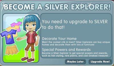 Account silver explorer
