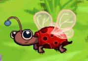 Critter turtlebug