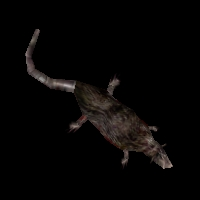 Ob ratdead02