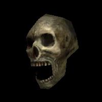 Ob skullvar01