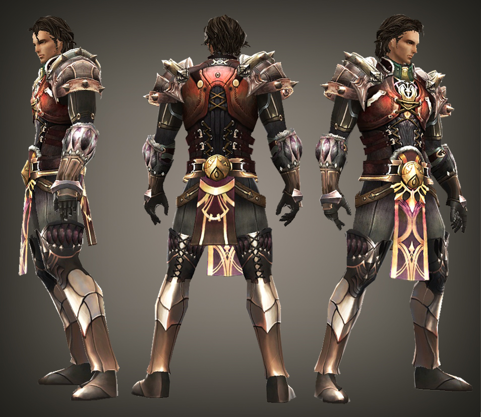 Paladin armor dragon knights online wiki fandom powered by wikia tier 04 color 2 publicscrutiny Gallery