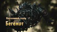 Бегемот-ДМС5