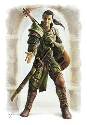 Half-Elf Emissary