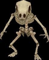 File:Goblin Skeleton.png