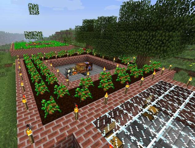 File:Illus forestry 2.jpg