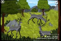 ForestGlitch