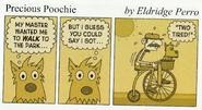 Do-It-Yourself Book Precious Poochie