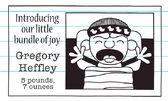 Gregory Heffley is born