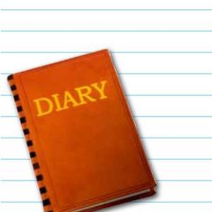 Diary Diary Of A Wimpy Kid Wiki Fandom