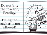 Bad Bradley