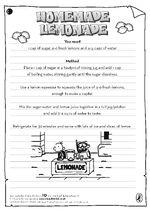 Homemade Lemonade Guide