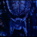 Predator2 39