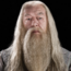 HPSAlbusDumbledore