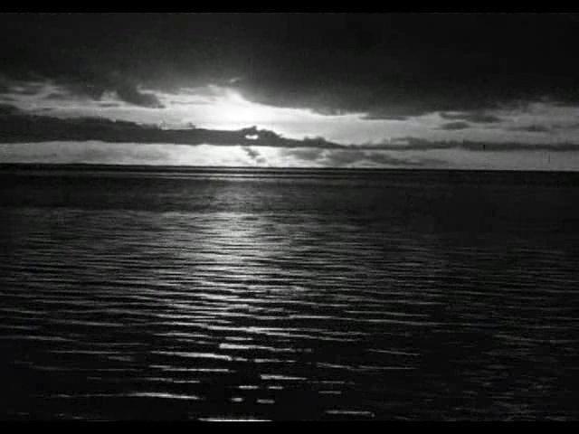 La Isla de Gilligan Latino 1964 l Que ladrón tan mono