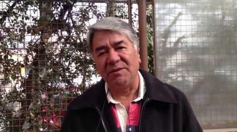 Entrevista a Paco Mauri