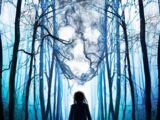 Espíritus en el bosque