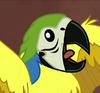 Parrot-eg-springbreakdown