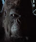 Gorilla-grodd-legends-of-tomorrow-2.9