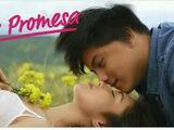 La promesa (telenovela)