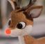 Rudolph R&FCIJ