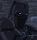 AA Black Panther