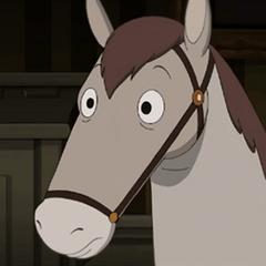 Fred, el caballo en <a href=