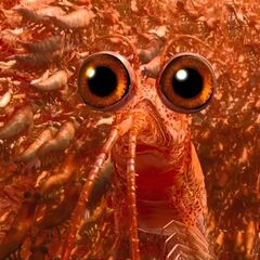 Will The Krill en <a href=