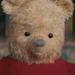Winnie The Pooh - CRRI