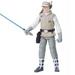 Luke Skywalker joven - Foce Link figure.jpg