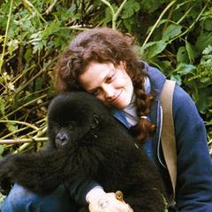 Dian Fossey en <a href=