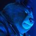 Bear1 Sing