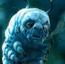 CaterpillarAIW10