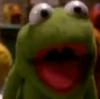 Robin the Frog IAVMMChristmasM
