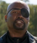 TheStarvingGamesNickFury