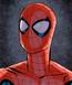 Hombre Araña (MVC)