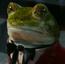 Frog1AIW10