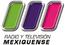 Tv mexiquense logo 2007-2010