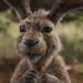 Conejo xD
